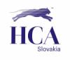HCA ON-LINE Logo